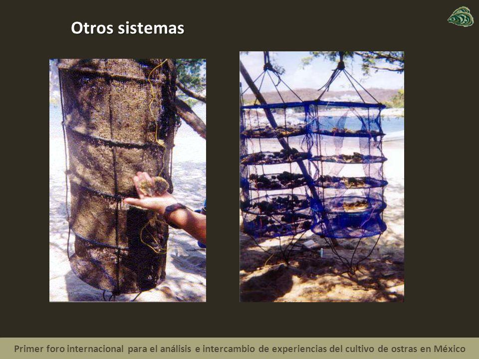 Otros sistemas