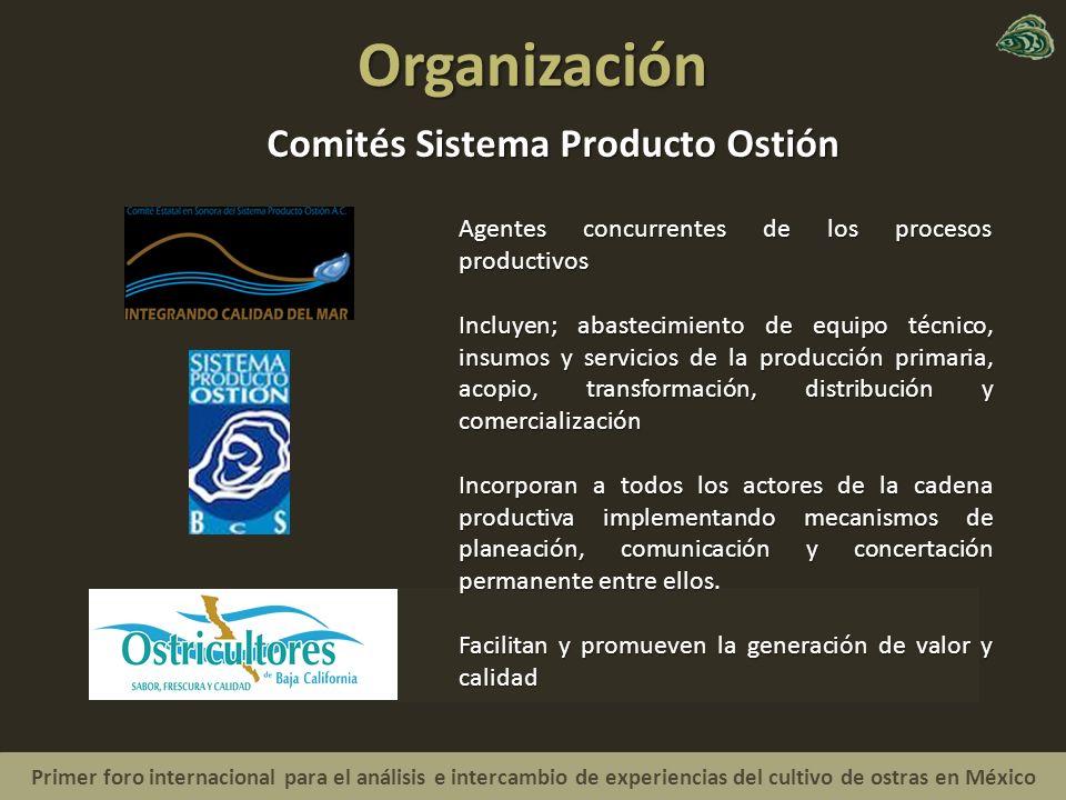 Organización Comités Sistema Producto Ostión