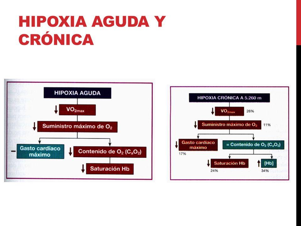 Hipoxia aguda y crónica