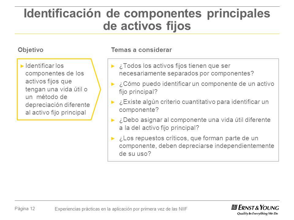 Identificación de componentes principales de activos fijos