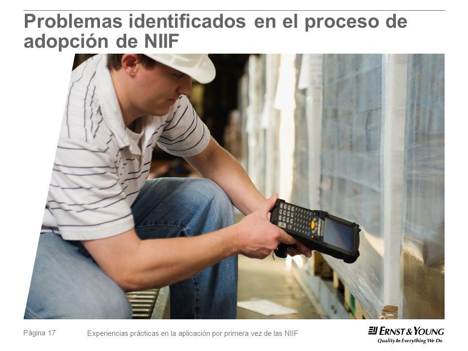 Problemas identificados en el proceso de adopción de NIIF