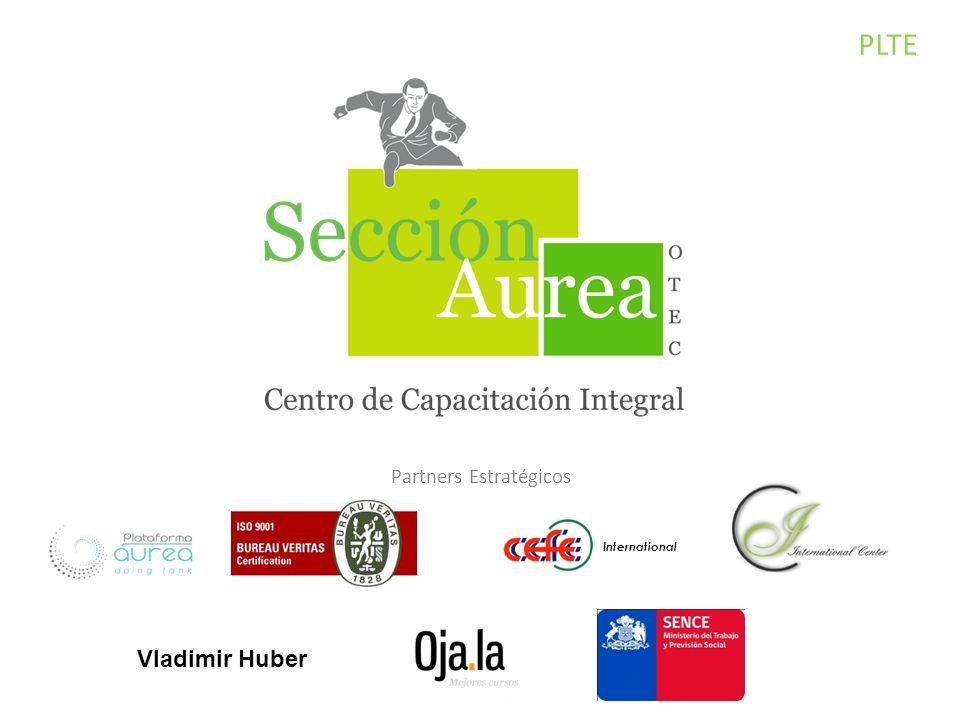 PLTE Partners Estratégicos International Vladimir Huber
