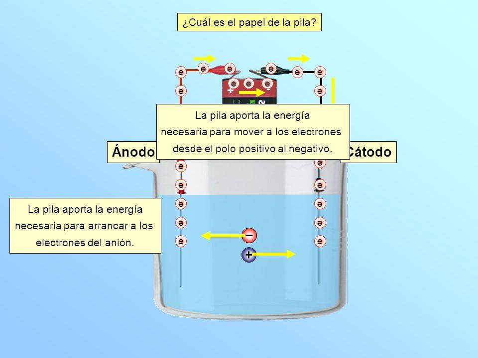 Ánodo Cátodo - + ¿Cuál es el papel de la pila