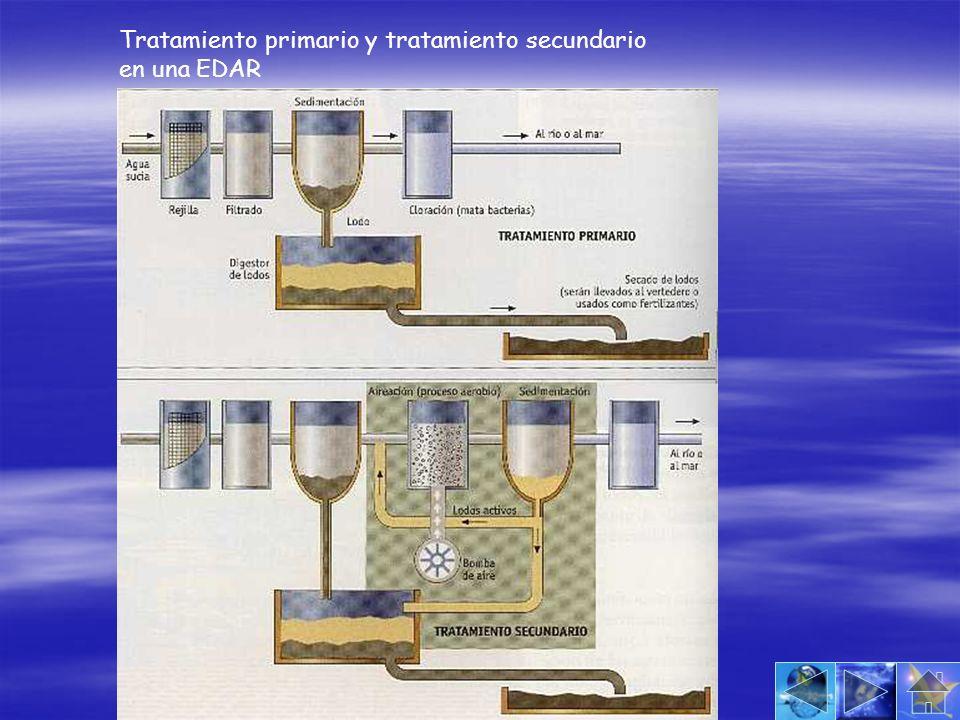 Tratamiento primario y tratamiento secundario en una EDAR