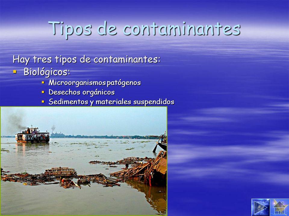 Tipos de contaminantes