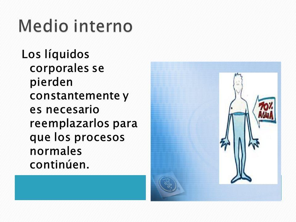 Medio interno Los líquidos corporales se pierden constantemente y es necesario reemplazarlos para que los procesos normales continúen.