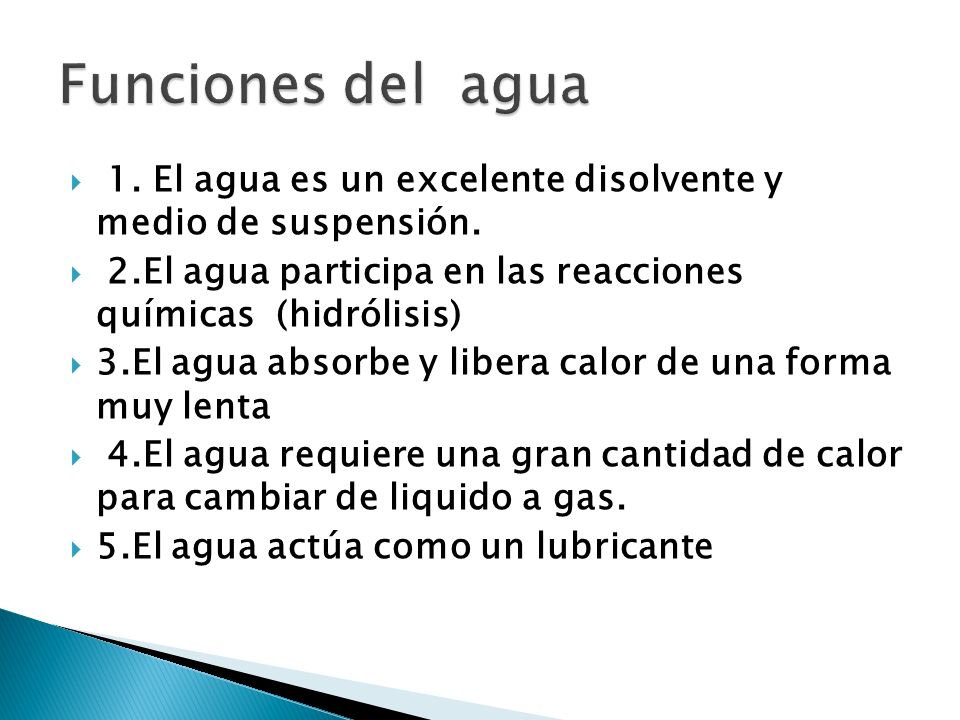 Funciones del agua 1. El agua es un excelente disolvente y medio de suspensión. 2.El agua participa en las reacciones químicas (hidrólisis)
