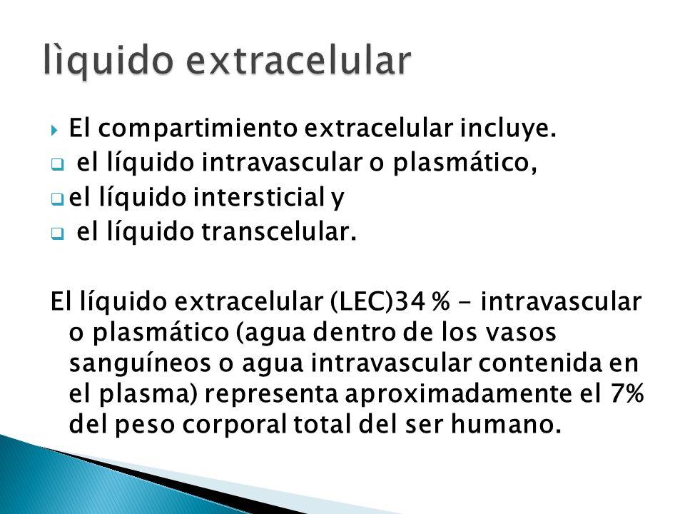 lìquido extracelular El compartimiento extracelular incluye.