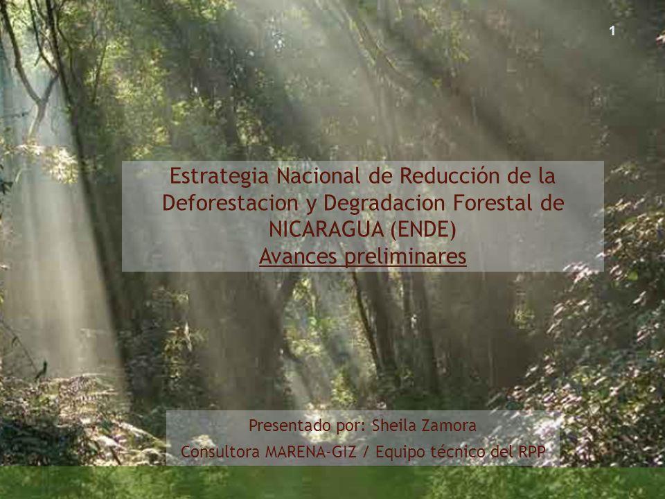 Estrategia Nacional de Reducción de la Deforestacion y Degradacion Forestal de NICARAGUA (ENDE) Avances preliminares