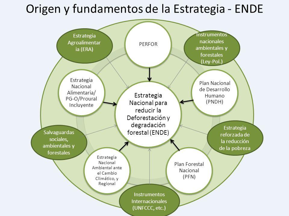 Origen y fundamentos de la Estrategia - ENDE