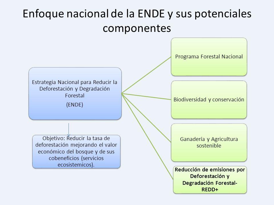 Enfoque nacional de la ENDE y sus potenciales componentes