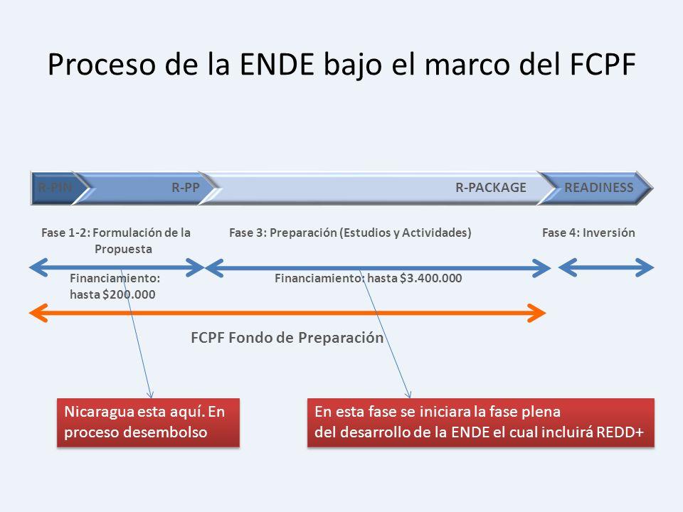 Proceso de la ENDE bajo el marco del FCPF