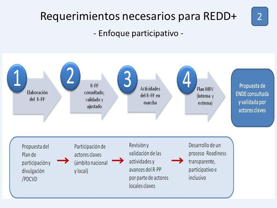 Requerimientos necesarios para REDD+