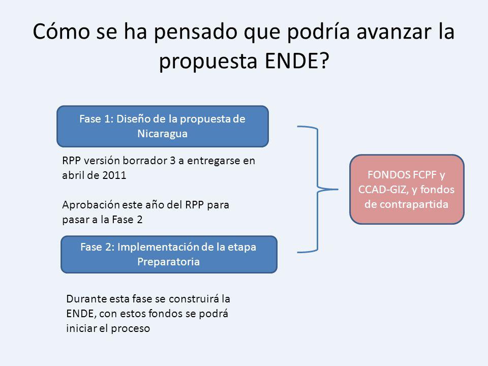 Cómo se ha pensado que podría avanzar la propuesta ENDE