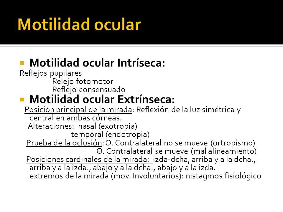 Motilidad ocular Motilidad ocular Intríseca: