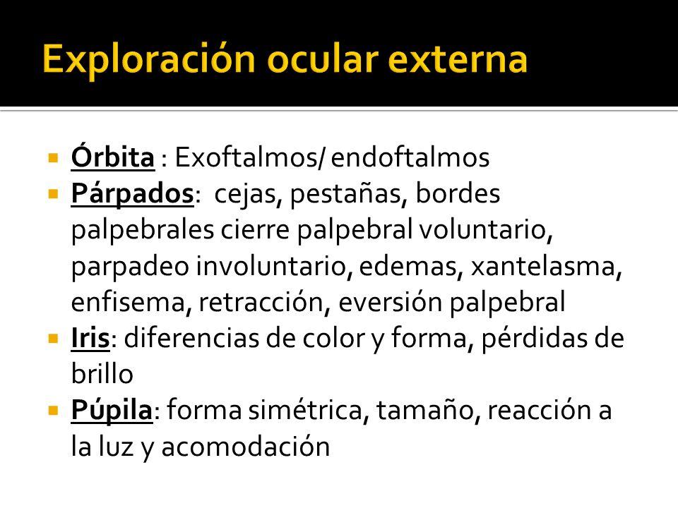 Exploración ocular externa