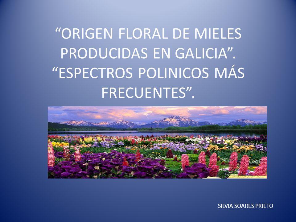 ORIGEN FLORAL DE MIELES PRODUCIDAS EN GALICIA