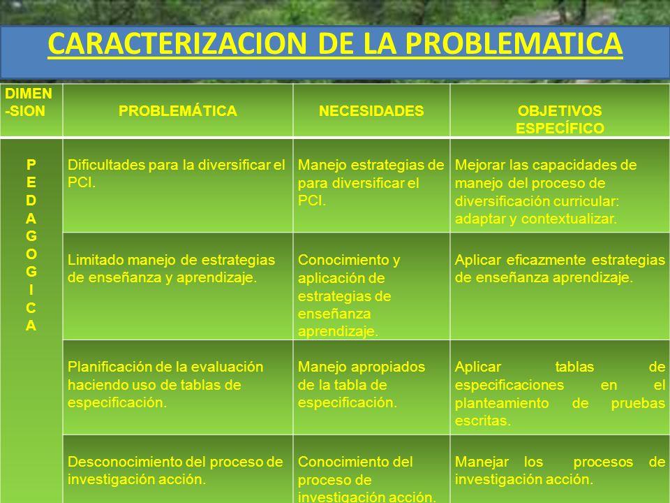 CARACTERIZACION DE LA PROBLEMATICA