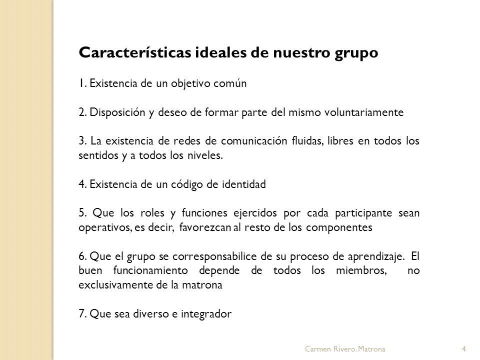 Características ideales de nuestro grupo