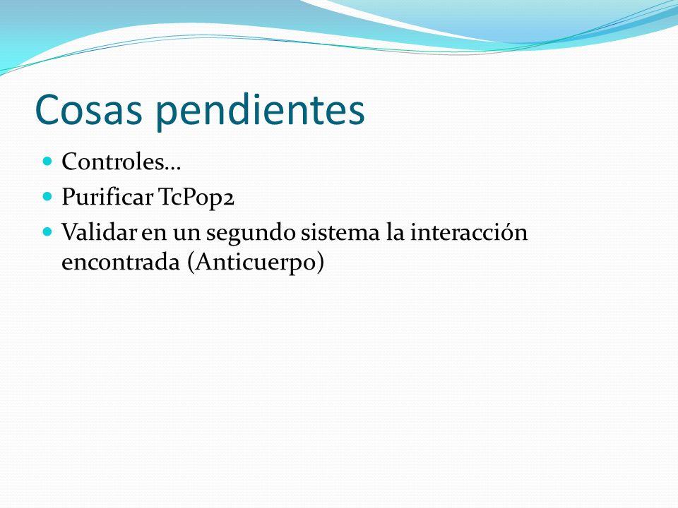Cosas pendientes Controles… Purificar TcPop2