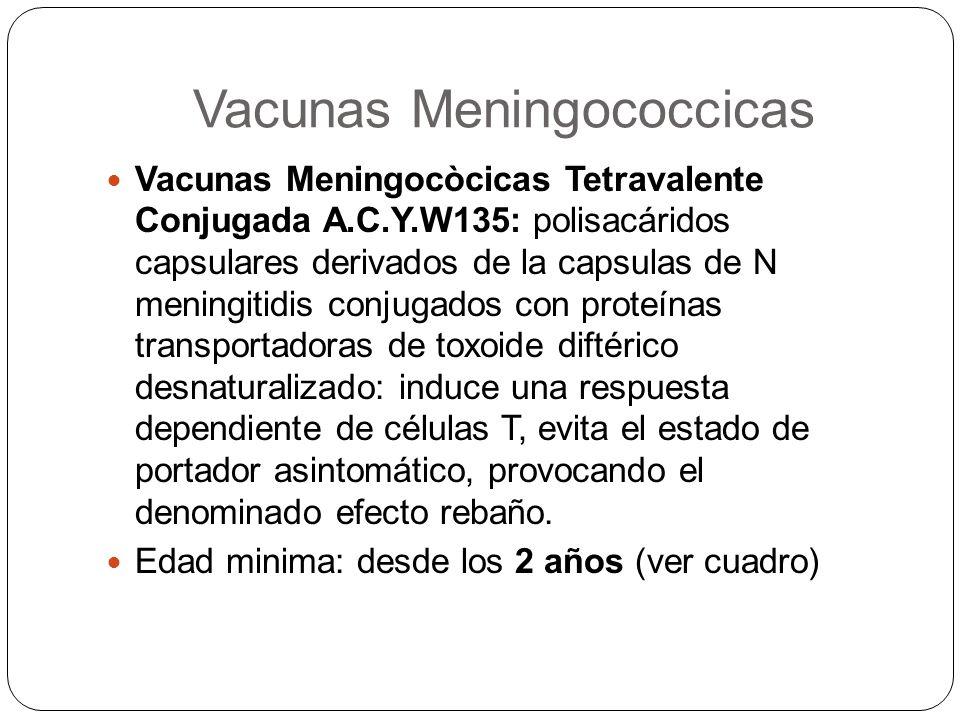 Vacunas Meningococcicas