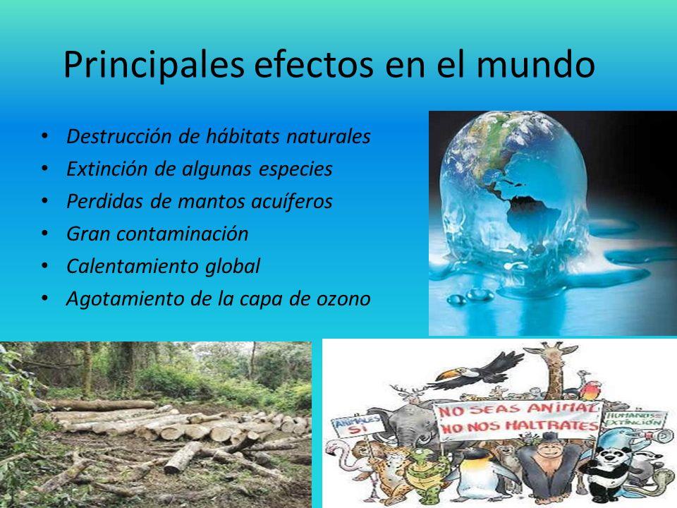 Principales efectos en el mundo