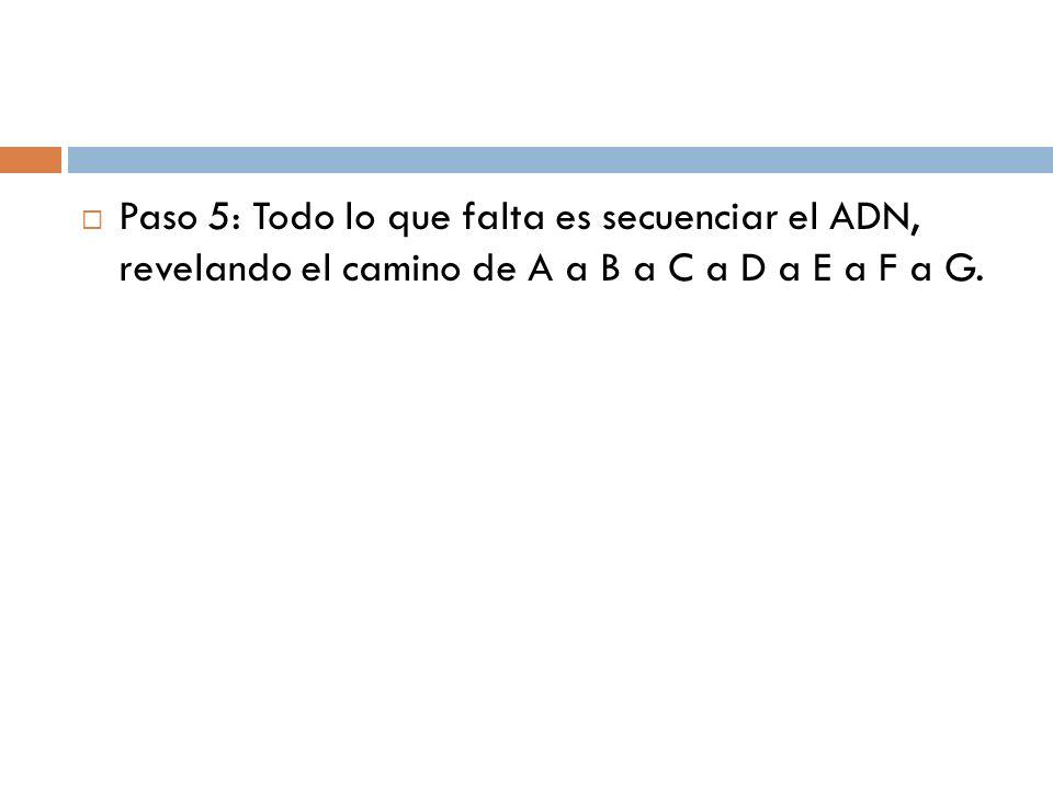 Paso 5: Todo lo que falta es secuenciar el ADN, revelando el camino de A a B a C a D a E a F a G.