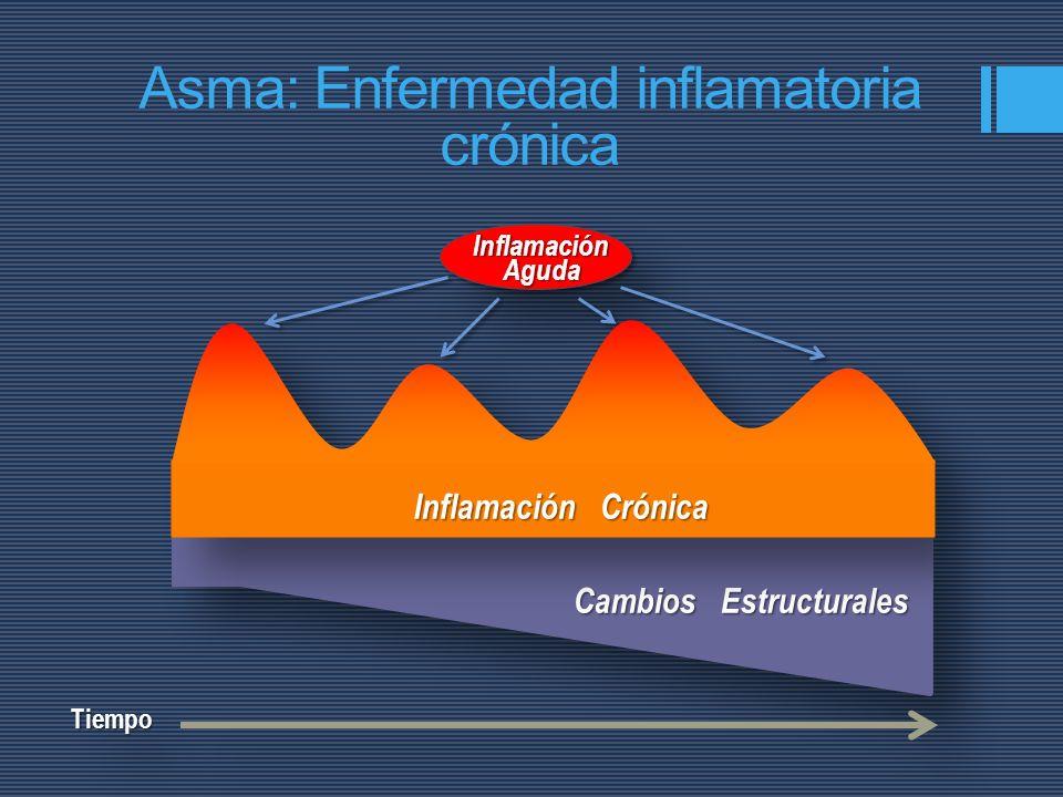 Asma: Enfermedad inflamatoria crónica