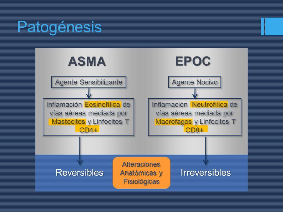 Patogénesis ASMA EPOC Reversibles Irreversibles Agente Sensibilizante
