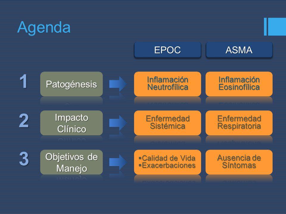 1 2 3 Agenda EPOC ASMA Patogénesis Impacto Clínico Objetivos de Manejo
