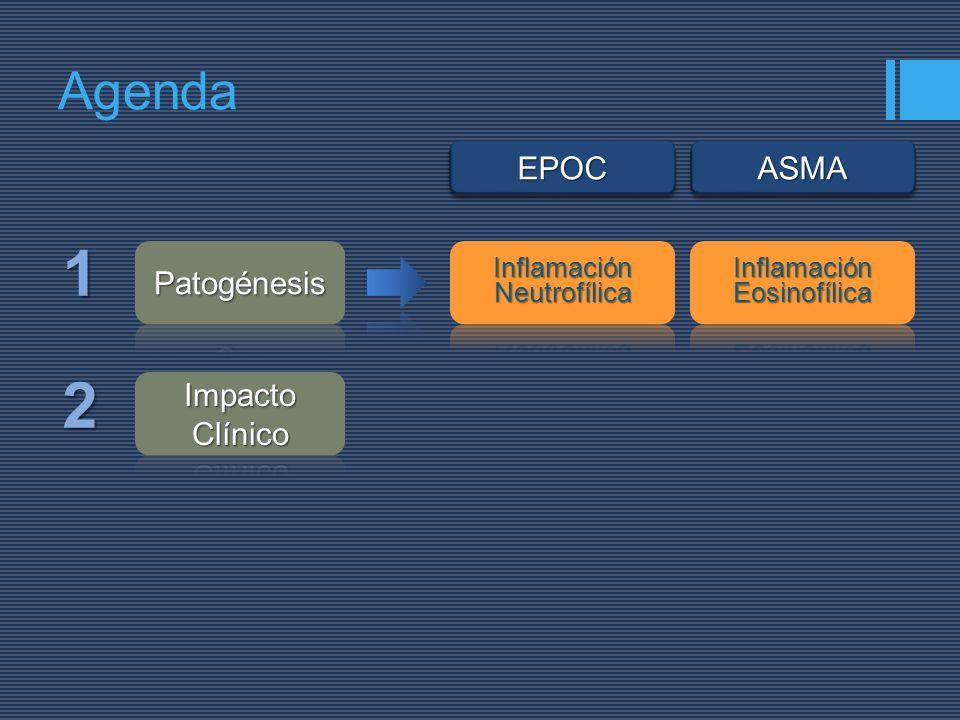 1 2 Agenda EPOC ASMA Patogénesis Impacto Clínico