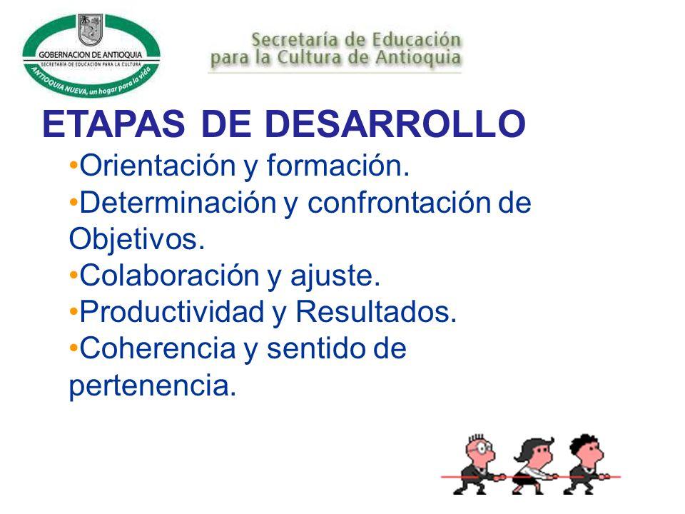 ETAPAS DE DESARROLLO Orientación y formación.
