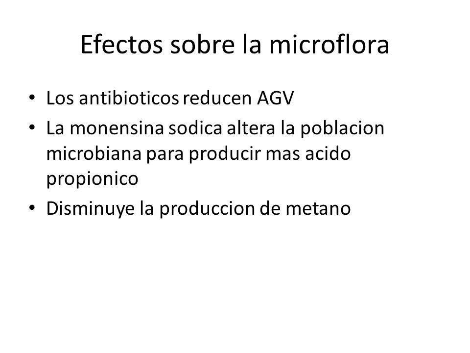 Efectos sobre la microflora