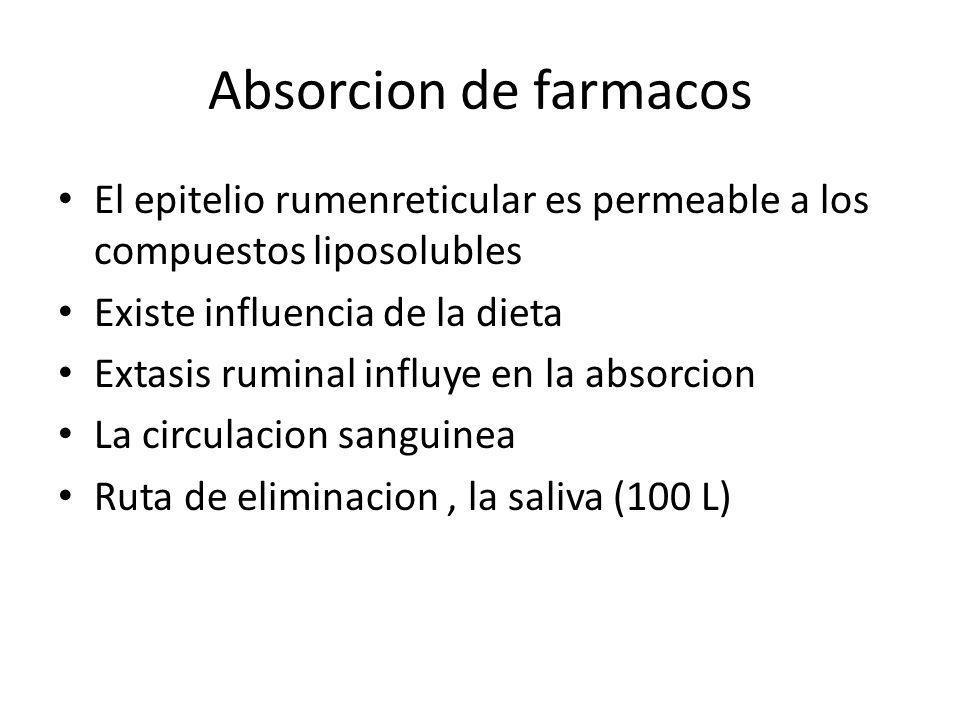 Absorcion de farmacos El epitelio rumenreticular es permeable a los compuestos liposolubles. Existe influencia de la dieta.