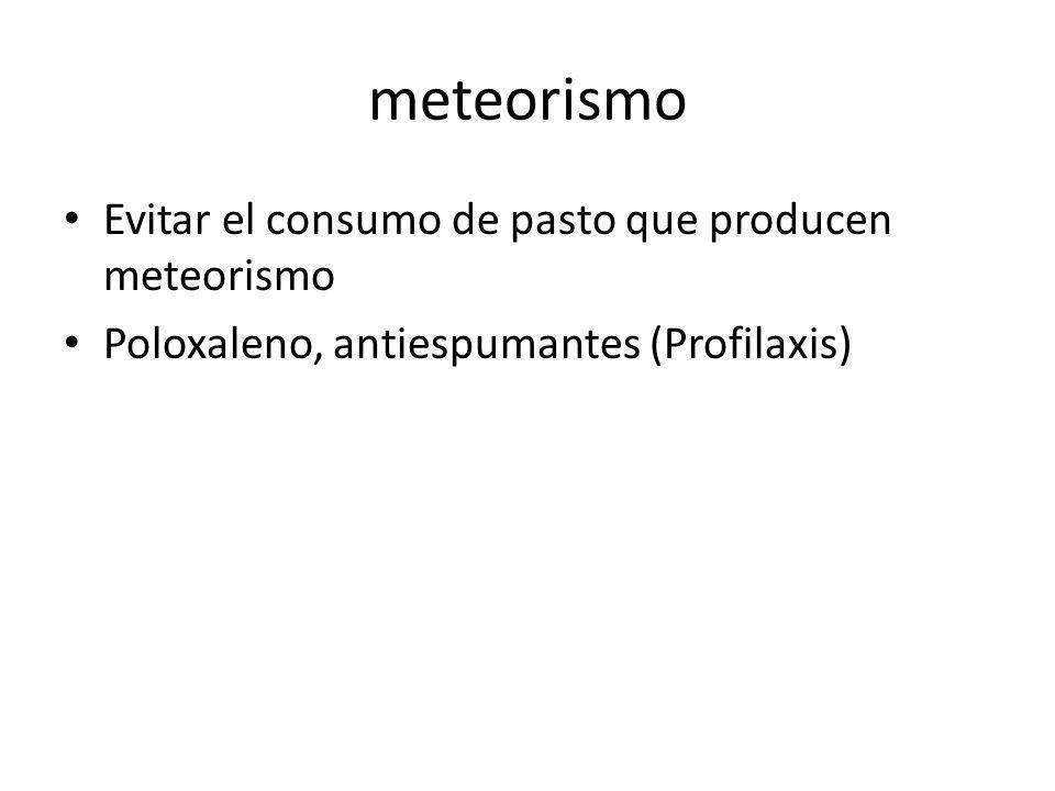 meteorismo Evitar el consumo de pasto que producen meteorismo