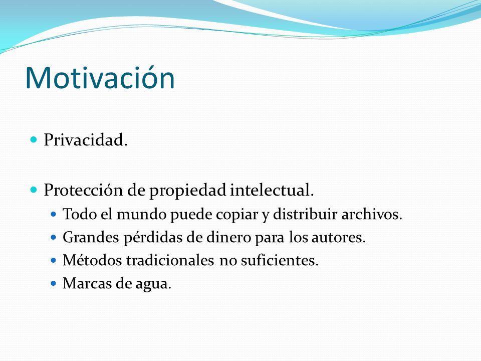 Motivación Privacidad. Protección de propiedad intelectual.