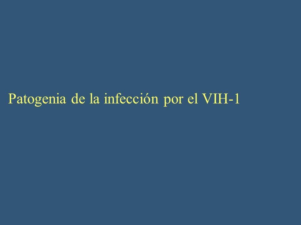 Patogenia de la infección por el VIH-1