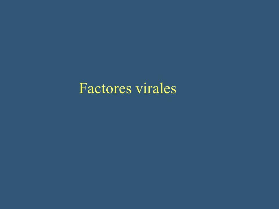 Factores virales