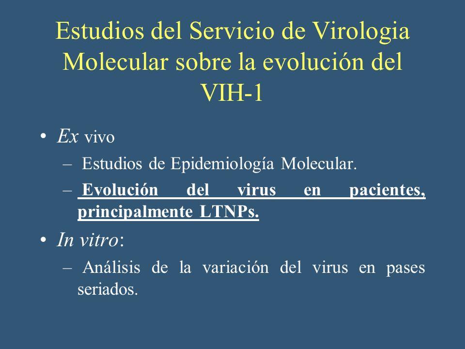 Estudios del Servicio de Virologia Molecular sobre la evolución del VIH-1