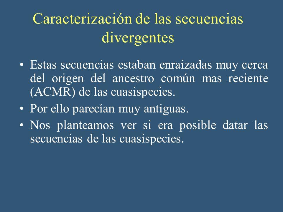 Caracterización de las secuencias divergentes