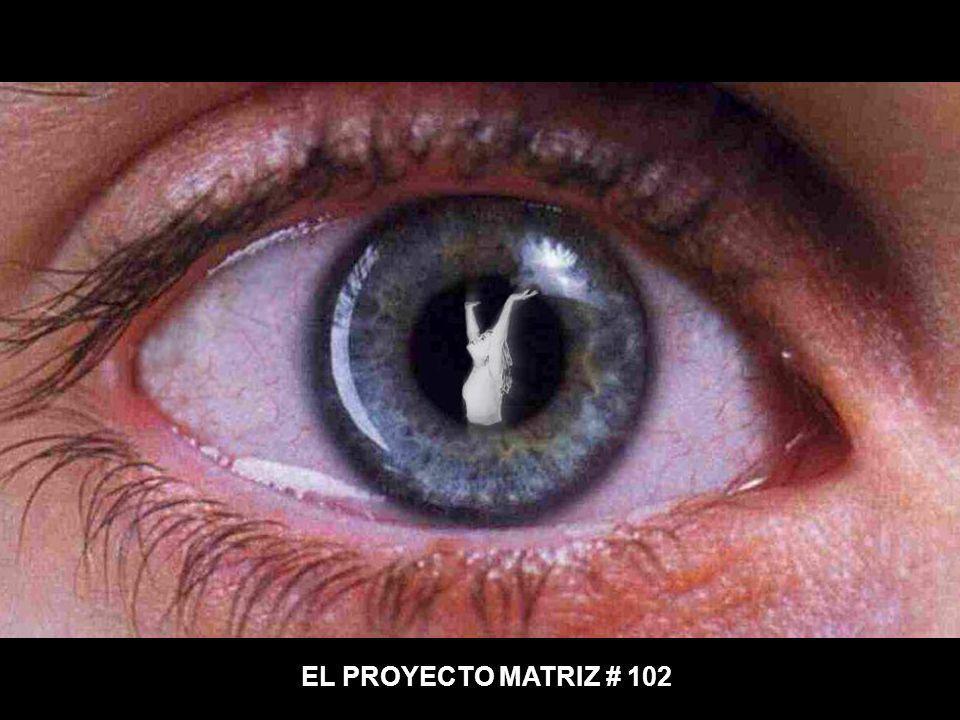 EL PROYECTO MATRIZ # 102