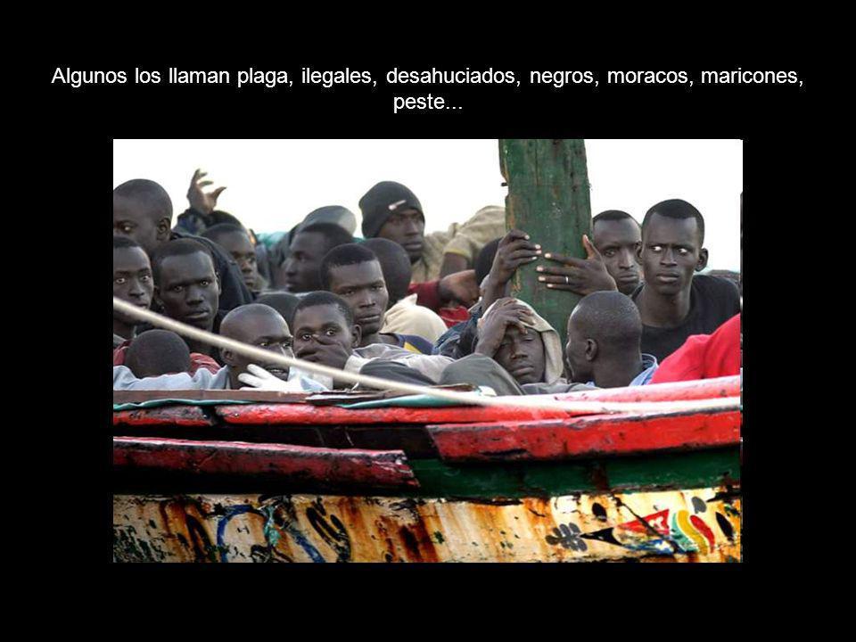 Algunos los llaman plaga, ilegales, desahuciados, negros, moracos, maricones, peste...