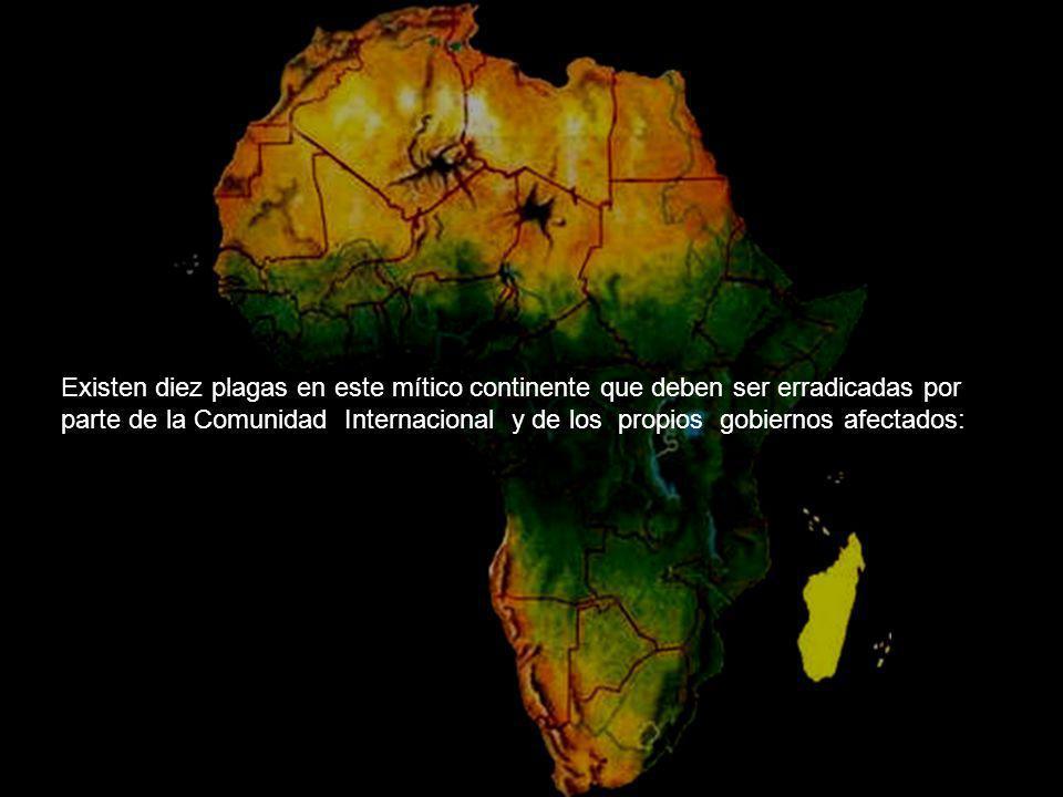 Existen diez plagas en este mítico continente que deben ser erradicadas por parte de la Comunidad Internacional y de los propios gobiernos afectados: