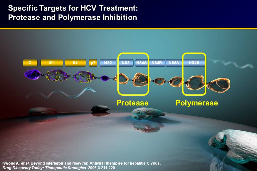 Specific Targets for HCV Treatment: Protease and Polymerase Inhibition