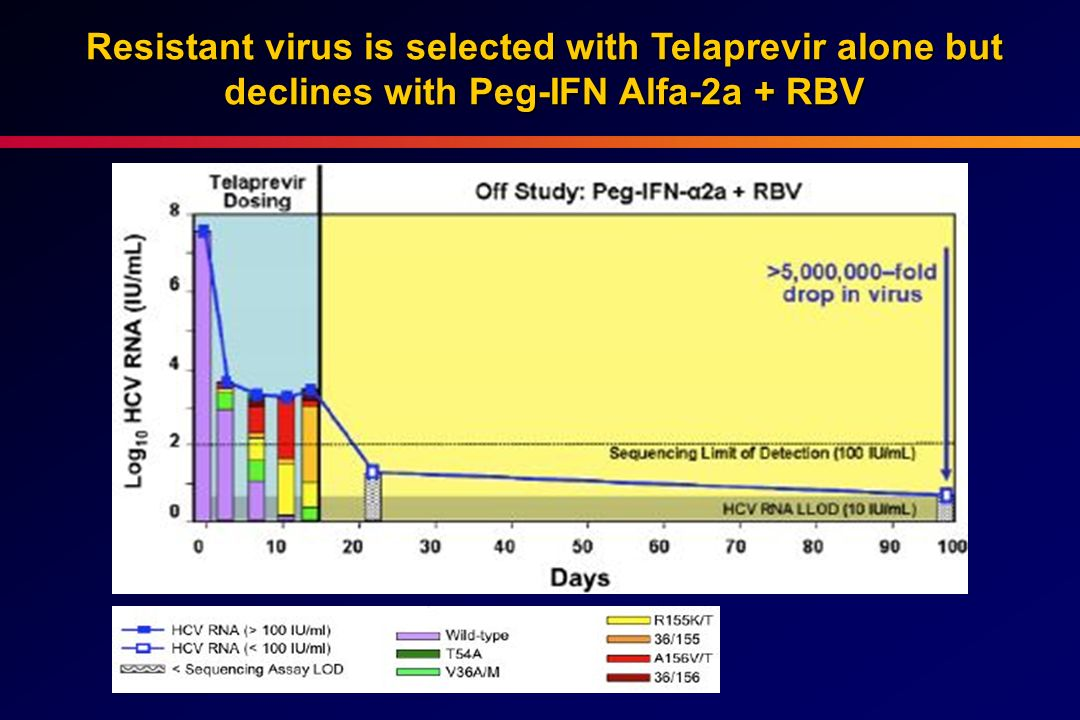 Resistant virus is selected with Telaprevir alone but declines with Peg-IFN Alfa-2a + RBV