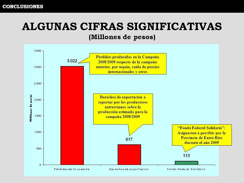 ALGUNAS CIFRAS SIGNIFICATIVAS