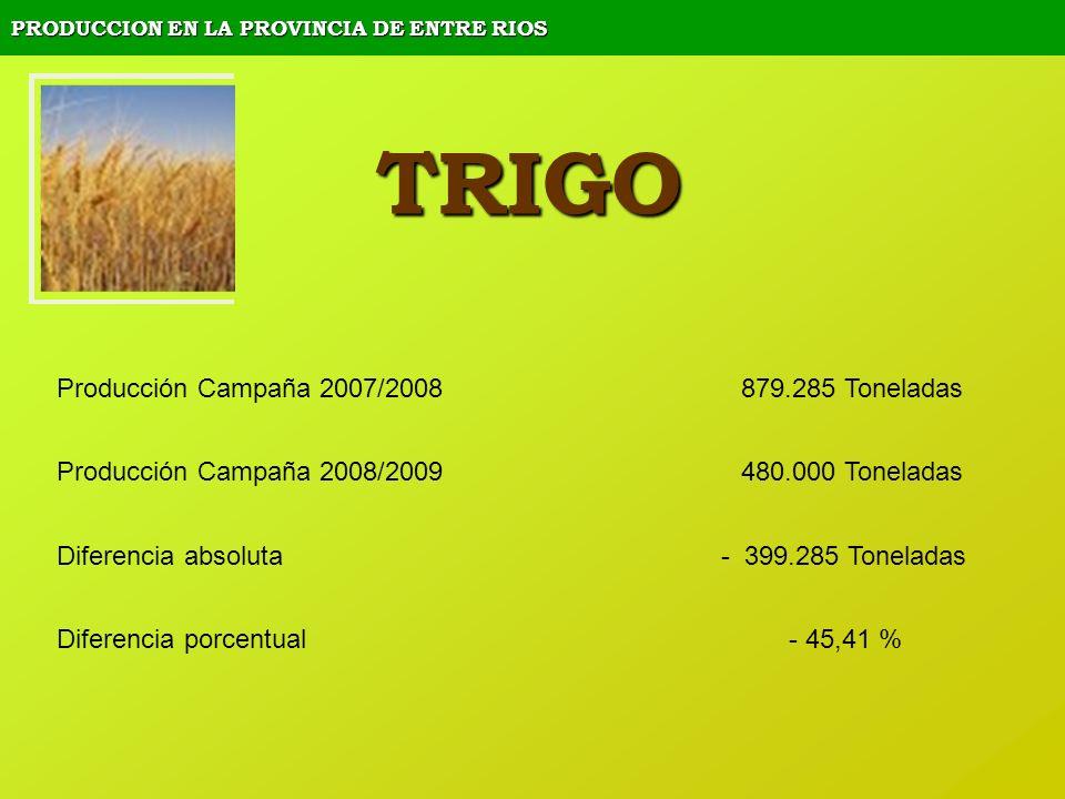 PRODUCCION EN LA PROVINCIA DE ENTRE RIOS