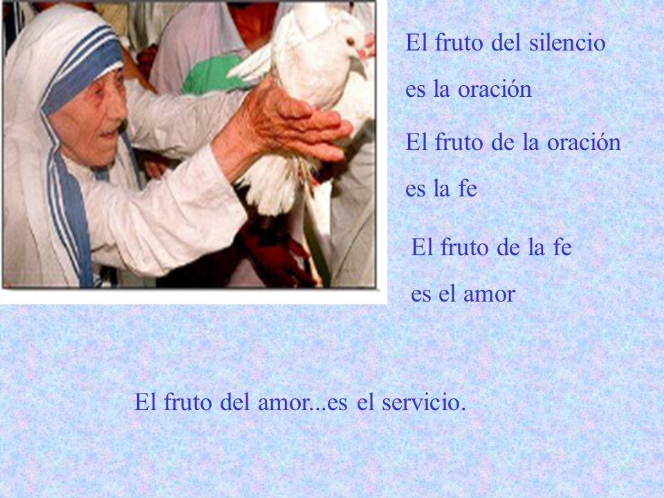 El fruto del silencio es la oración. El fruto de la oración. es la fe. El fruto de la fe. es el amor.