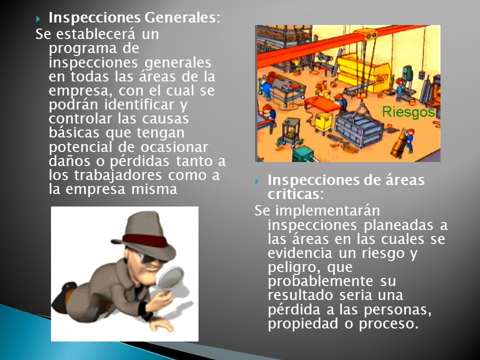 Inspecciones Generales: