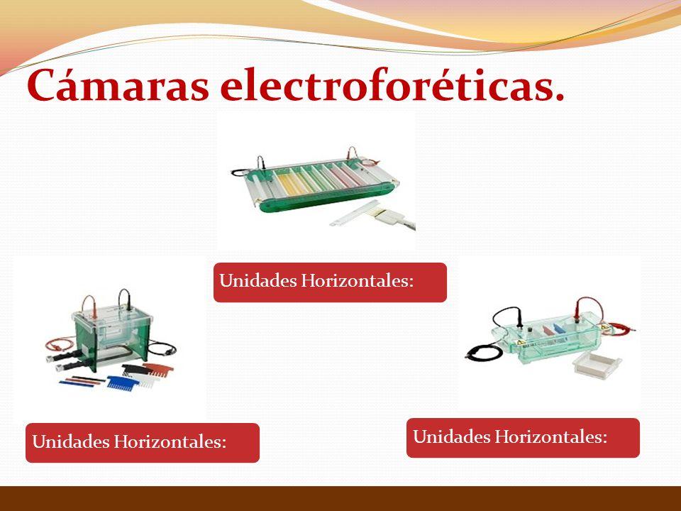 Cámaras electroforéticas.